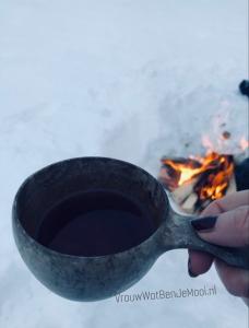 ijsvissen in lapland bessensap