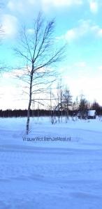 sneeuwscooter huren in lapland