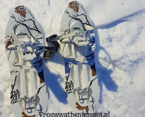 sneeuwschoenwandeling in lapland