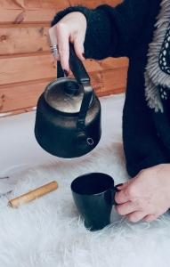 vakantiehuis huren in lapland villa huilkinki thee zetten