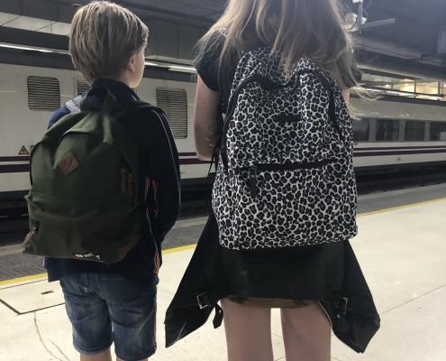 Ryanair en handbagage